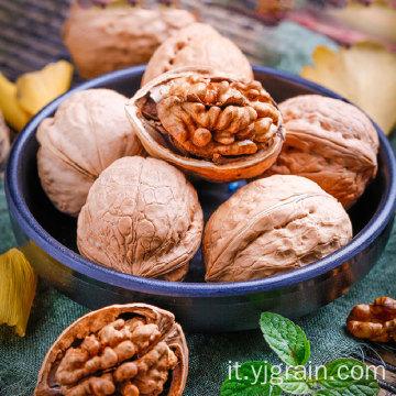 Commercio all'ingrosso di prodotti per l'agricoltura noci naturali