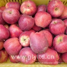 Hight Qualidade Fresh Huaniu Apple, Apple FUJI, Qinguan Apple