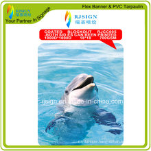 Two Side Printed Coated Blockout Flex Banner (RJCC005)