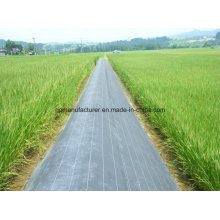 PP Woven Geotextile Fabric Ground Cover