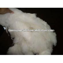 dehaired lana wool