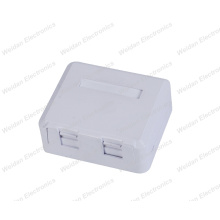 Dual Port RJ45 Mount Box