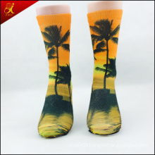 Early Spring OEM Picture Print Sock