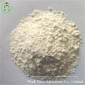 Aliment de farine de protéine de riz de repas de gluten de riz
