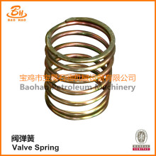 Valve Spring of Mud Pump Parts