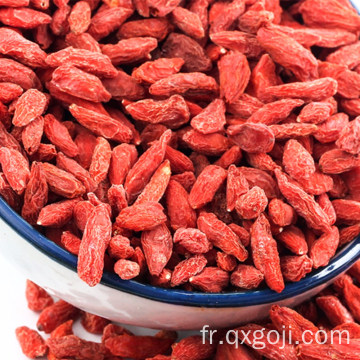 AD séchage des baies de goji rouges fruit de wolfberries