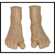 Massage Foot Model (M-9-17) Acupuncture