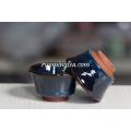 Pintura Azul Porcelana Handleless Cup