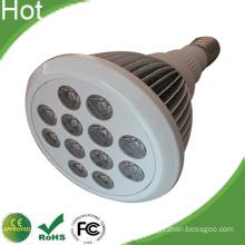 White Bridgelux 12W LED PAR38 Home Light