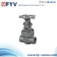 Válvula de compuerta de acero forjado