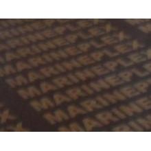 Contrachapado de película con logotipo impreso
