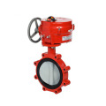 Cast Iron Ansi Butterfly Valve