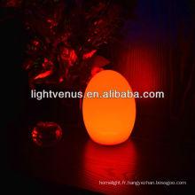 Oeuf LED
