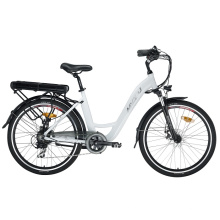 Fat Tyre Leisure Electric Bike