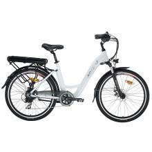 Fat Tire Leisure E-Bike