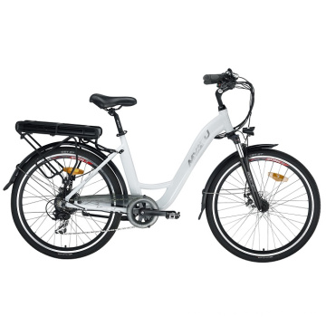 Fat Tire Leisure E-Bike