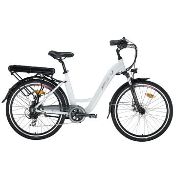 Vélo électrique de loisirs Fat Tire