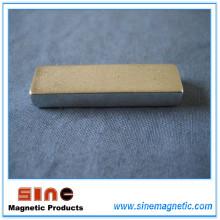 Custom Permanent Ring NdFeB/Neodymium Magnet with RoHS