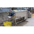 Industrial Big Size Yam/Jicama/Taro Washing & Peeling Machine
