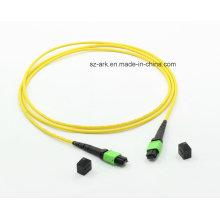MPO-MPO OS2 (9/125) Cable de fibra óptica (1.5M, 12core)