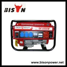 BISON (CHINA) SWISS KRAFT SK-8500W Generatoren