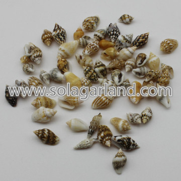 6-16mm piccoli piccoli naturale spirale conchiglia perline Charms