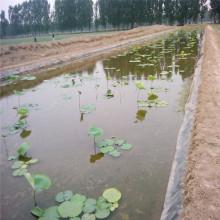 Géomembrane imperméable imperméable de HDPE pour l'irrigation goutte à goutte