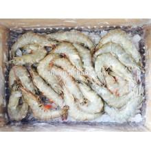 HL002 nuevo vannamei congelado camarón blanco al por mayor