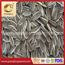 Hot Sale Flavored Roasted Spiced Sunflower Seeds 2020 New Crop