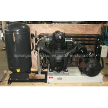 Pompe à air de compresseur d'air à soufflage de bouteille d'animal domestique (Tpt-1.3 / 30 15kw)