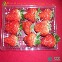 Rectangular disposable plastic fruit plate