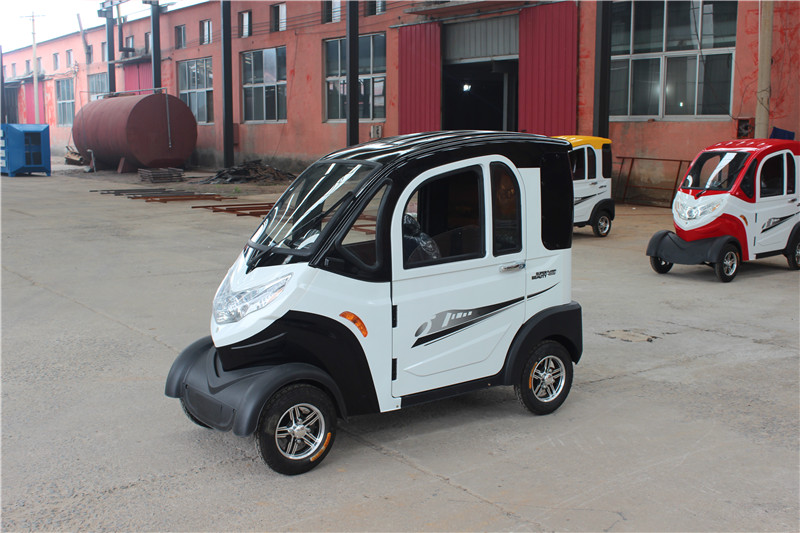 Black and white Neighborhood Electric Vehicles