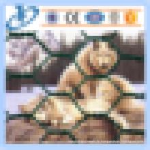 Rembourrage en fil hexagonal galvanisé / revêtu de PVC