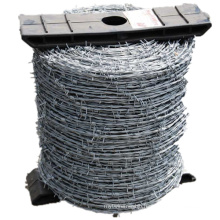 China Manufacturer of Double Strands Galvanized Barbed Wire for Fence (BW)