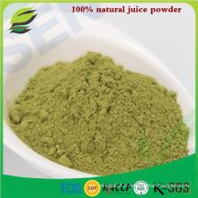 100% poudre de jus d'herbe organique organique naturelle