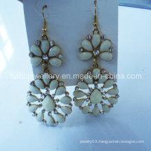 Fashion Jewelry/Resin Stone Fashion Earring Colorful/Fashion Hook Dropping Earring (NPE1007)