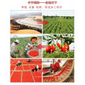 Organische getrocknete Goji Berry, USDA, FDA, EU, Koscher