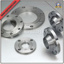 Stainless Steel Flanges (YZF-FZ181)