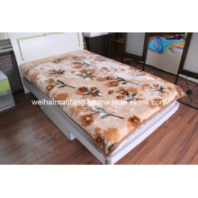 Raschel Printing Mink Acrylic Blanket (MQ-LAB013)