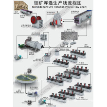 Molybdenum Ore Flotation Processing Equipment Production Line