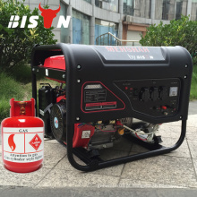BISON CHINA Metane Gas Electric 5kw Biogas Generator