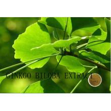 (Ginkgo Biloba Extract) --Flavones 24% Lactones 6% Ginkgo Biloba