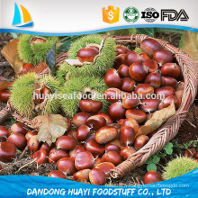 Classer les dandong mountains sweet organic chinese chestnuts