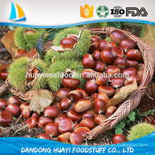 grade a dandong mountains sweet organic chinese chestnuts