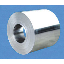 Fast Shipment Free Freight Aluminum/Aluminium Coil Alloy of China
