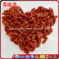 Top quality goji fruit goji berries dried goji with low pasiticide