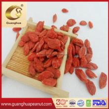Best Quality Dried Organic Ningxia Goji Berry From China