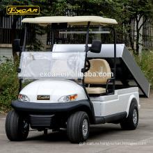 2 местный электрический гольф-кары Китай мини багги для продажи клуб автомобиль гольф-багги корзину