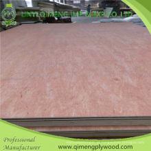 Poplar / Hardwood Core Bbcc grau 3.6mm Bintangor madeira compensada com preço barato