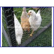 Galvanized Hexagonal Livestock Wire Netting